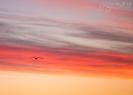 Sunrise Verdens Ende_1